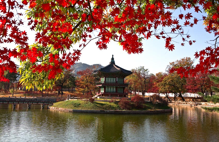 korea affordable tour packages